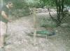 Un parc animalier à découvrir dans le sisteronais !