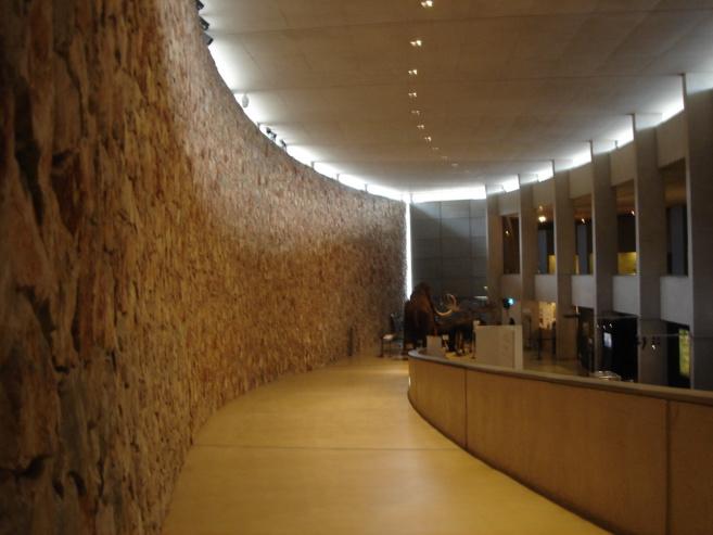 L'environnement et le temps au cœur de la Fête de la science au musée de Préhistoire