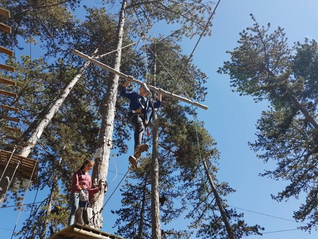 Des vacances de Pâques dans les arbres au Chaffaut