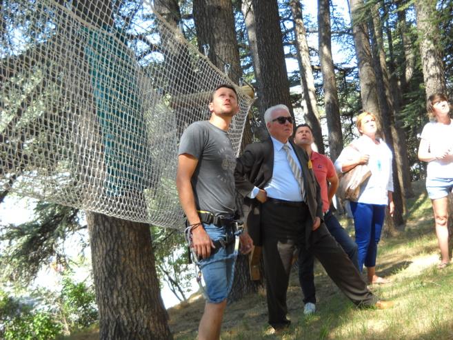 Des vacances sur un arbre perché!