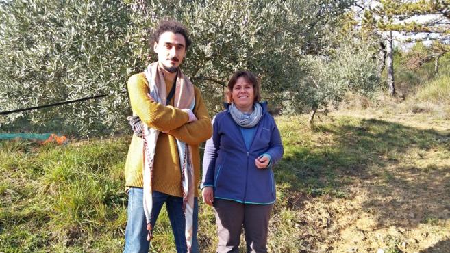 Apprendre le développement durable dans les oliviers!