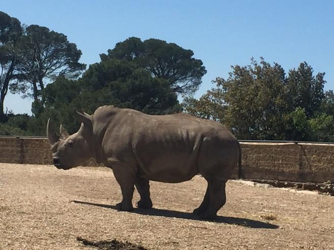 Une visite au Zoo de La Barben!