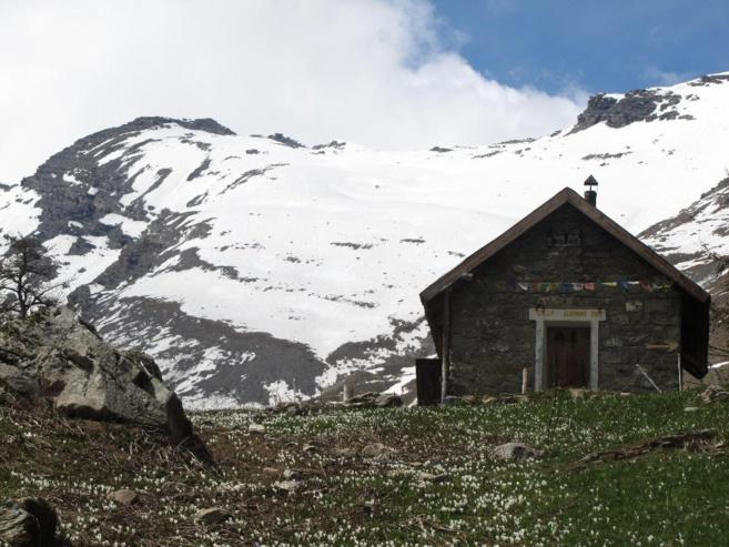 Astro rando, des Randonnée découverte ou sportive, entre sommets enneigés et flore culinaire