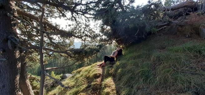 Chronique Line: LA RANDONNEE .. dans les Hautes Alpes en famille ou entre amis. quelle belle idée !