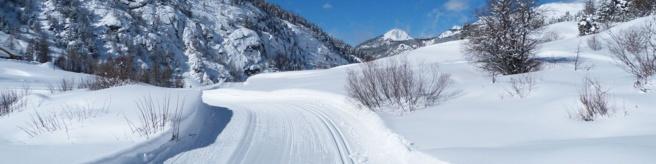 Un très bel hiver pour le Nordique