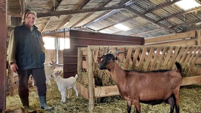 destination Haute-Provence : La ferme de la Pierrine à Valensole