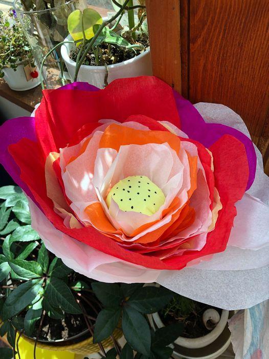 Ateliers fleurs pour Amal  - 7 juillet à 18h30