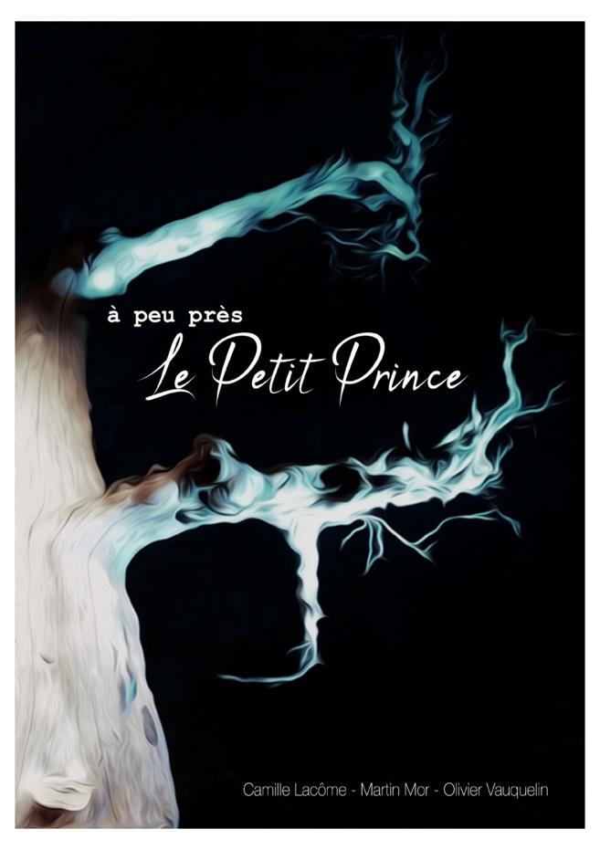 Un week-end de spectacles à Saint-Martin-les-Eaux