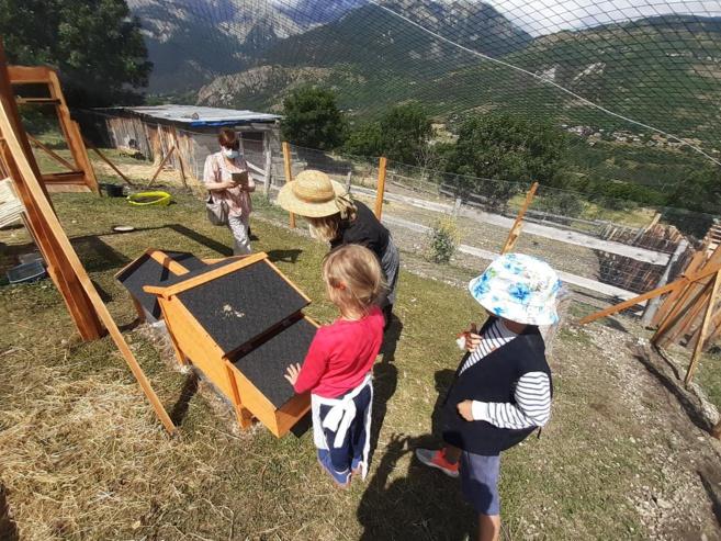 Une ferme pédagogique aux traditions alpines : la petite ferme des regains
