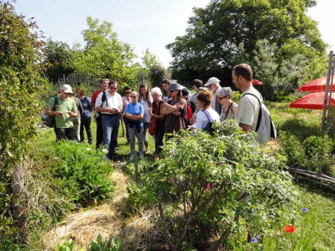 Croq'jardin: un jardin partagé unique en région PACA