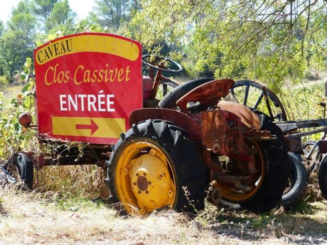 Des vendanges un peu singulières dans les vignes du clos Cassivet à Trans en Provence