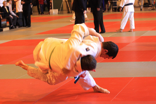Le judo sisteronais, club phare des Alpes de Haute Provence !