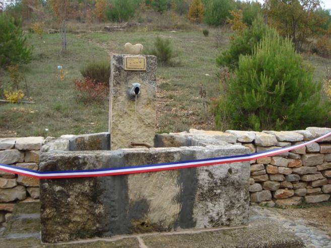 A Esparron de Verdon des jeunes ont restauré les terres incendiées