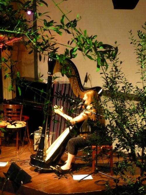 Spectacle pop et poésie à Gap avec Laure Brisa