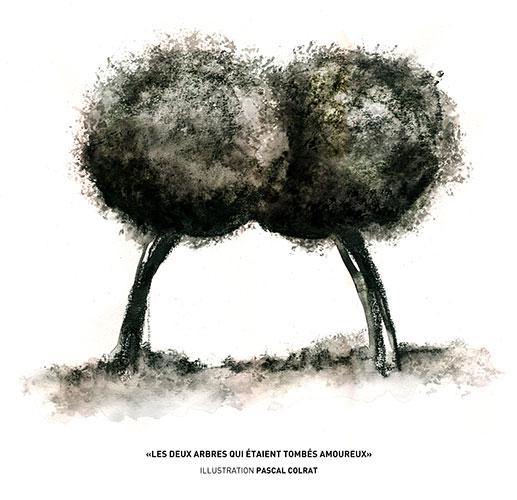 L'univers image et poésie de Pascal Colrat à La Grange