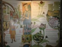 Les merveilles de l'Orient  à la Médiathèque d'Herbès