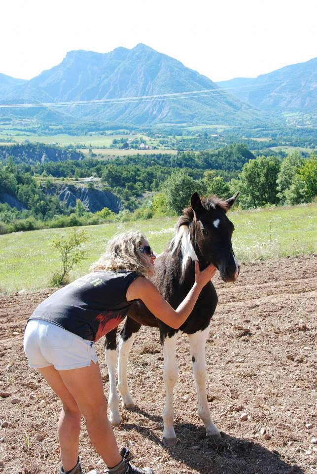 Marlène est éleveuse de chevaux : un métier et une passion