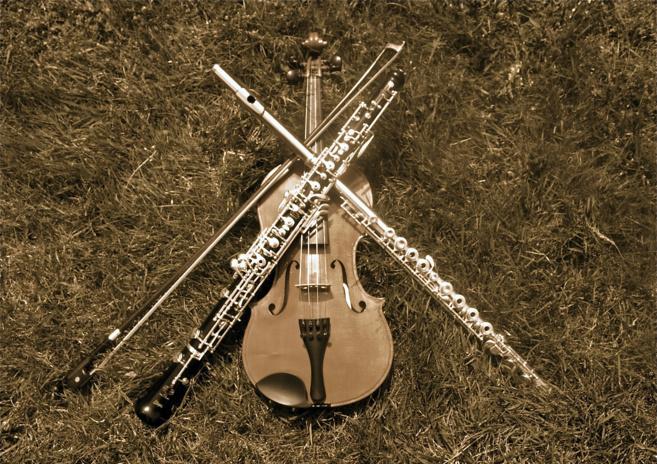 Source photo : musicienschambrelimoges.wordpress.com