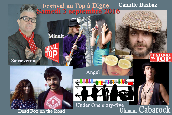 Festival de soutien Samedi 3 septembre 2016 au Parc Louis Jouvet à Digne-les-Bains