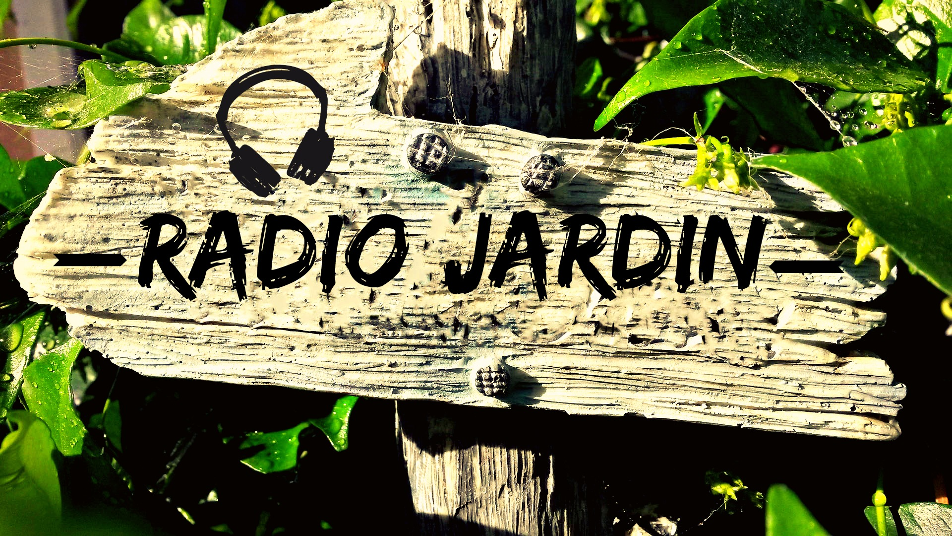 Radio Jardin du 20 septembre 2016