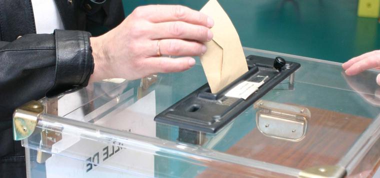 Voter ou s'abstenir : Billet d'humeur de François Malabave
