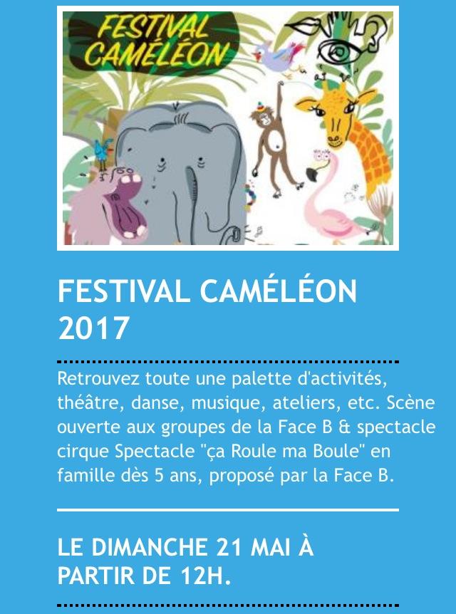 Festival Caméléon 2017 au Parc de la Schappe