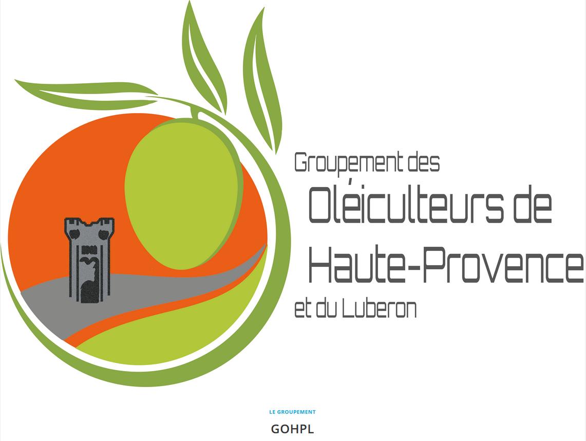 L'olive au cœur de la Haute-Provence