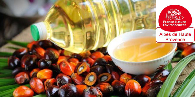 L'huile de Palme : danger