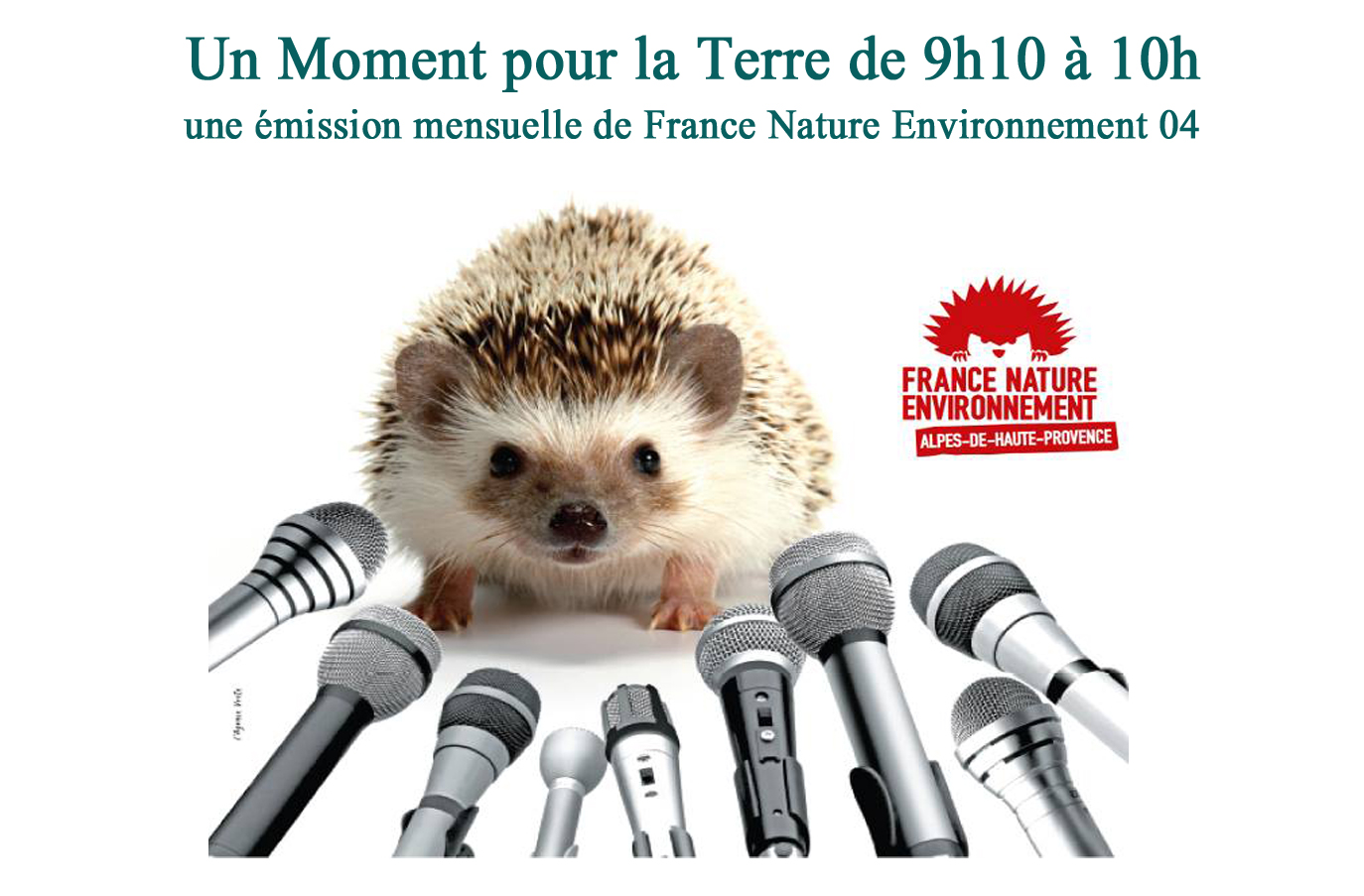 Un moment pour la terre avec France Nature Environnement - Protection des données informatiques et logiciels libres