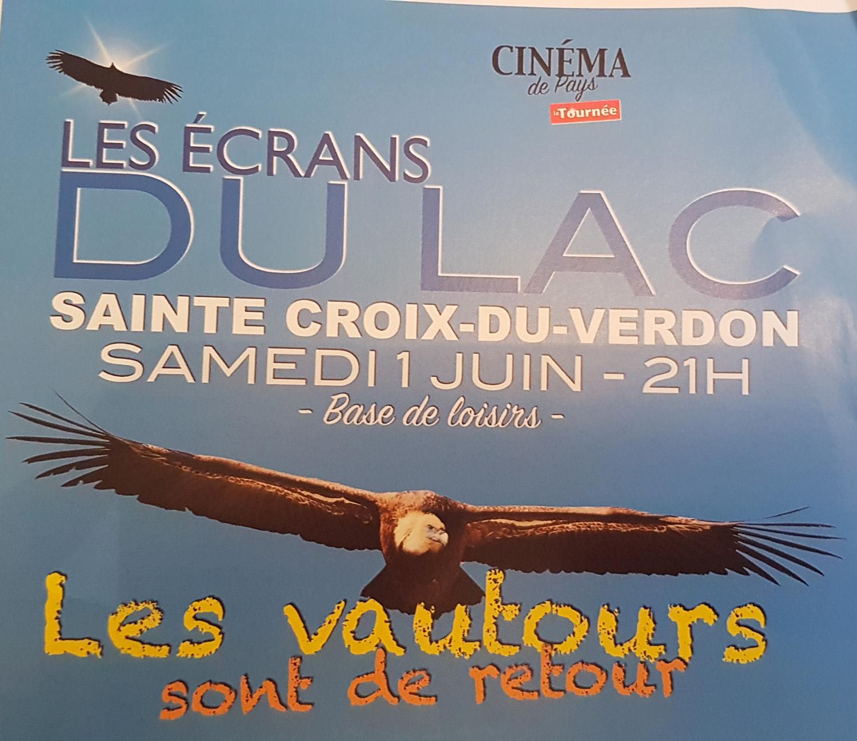 Les vautours sont de retour, une projection-débat les écrans du lac