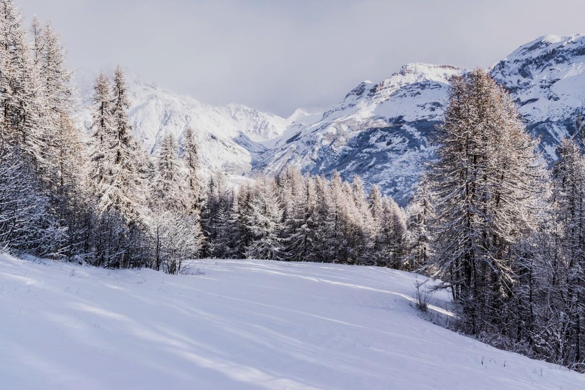 Promenade hivernale avec Jean Sarraméa