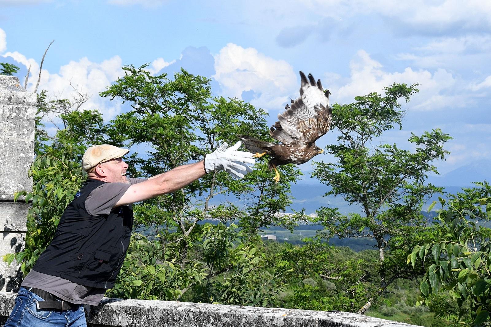 """La """"Ligue de Protection des Oiseaux"""" active dans le 04"""