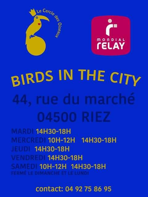 Riez,  Mondial Relay : Birds in the city !
