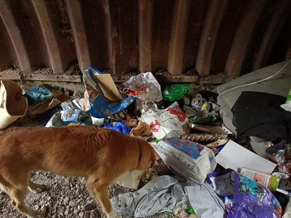 Une belle initiative citoyenne de ramassage des déchets à Briançon !