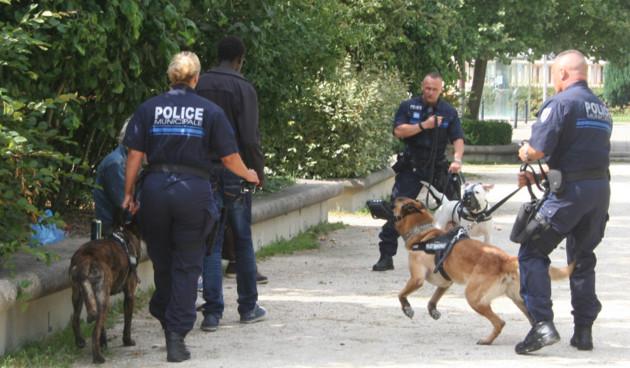 Une brigade cynotechnique pour la police municipale de Manosque à l'ordre du jour du conseil municipal