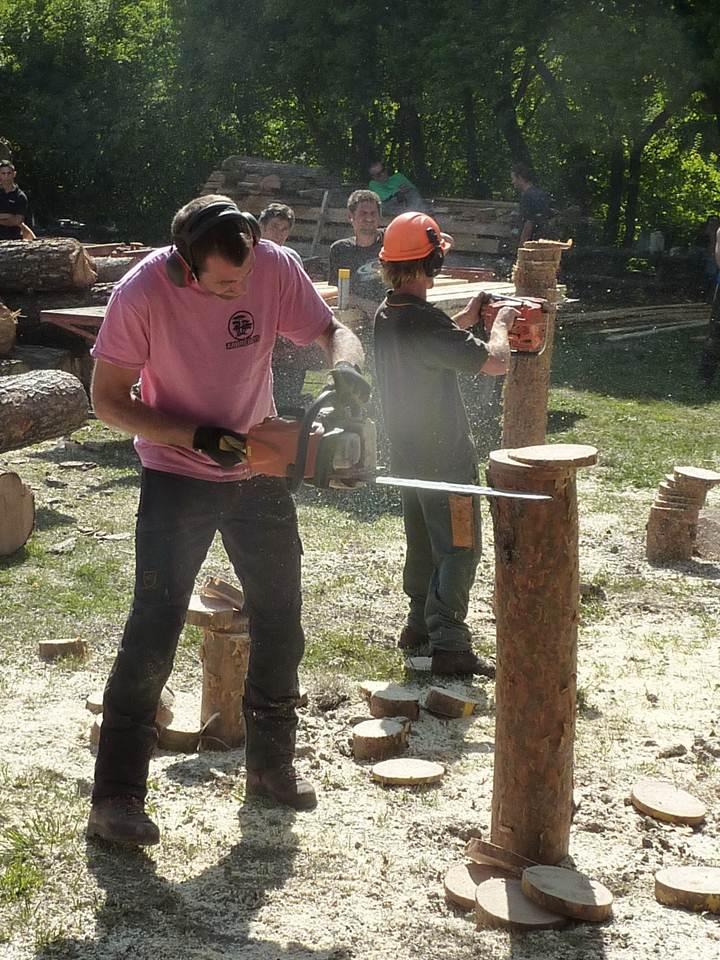 Le bois : une richesse à préserver et exploiter. La Fête du bois a lieu ce week-end à la Martre