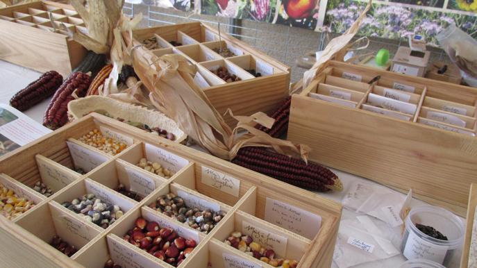 Au  marché du Brusquet,  gros plan sur la bourse aux graines, bourse de liberté