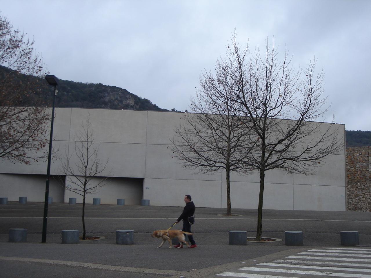 Sylvain Campana et Idem, chien guide, un duo forcément complice