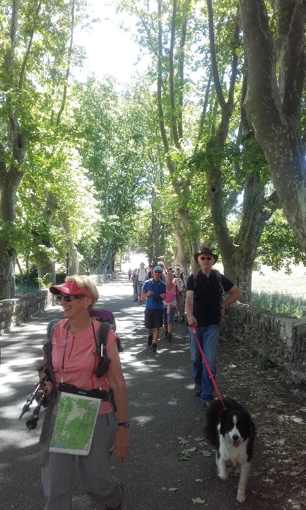 Une nouvelle boucle de randonnée dans le Verdon