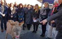 La 19ème Fête de l'âne gris de Digne a suivi et participé au téléthon