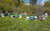 Une bergère d'abeilles a accueilli un public familial au Brusquet