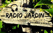 Radio Jardin du 22-08.2017