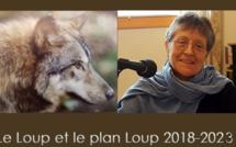Le plan loup dans le viseur de France Nature Environnement