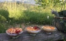 Creme-vanille-sur-lit-de-pêches-et-crumble-aux-abricots-de-Volonne