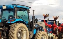 Ils creusent de si beaux sillons…Concours de labour à Selonnet