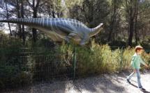 Raphaël a la passion des dinosaures