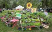 Le festival des plantes se tiendra à Mont Dauphin