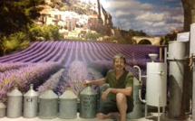 Absolue Lavande à Sisteron : un parfum de souvenirs envoûtant