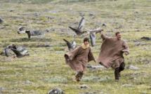 Les Chroniques ciné de Caro - Donnes moi des ailes