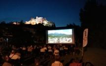 Le cinéma de pays sur pause
